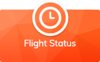 FLIGHT_STATUS_large_revised_button - Textured