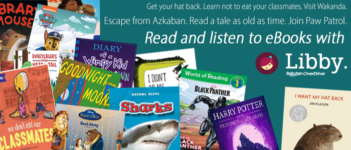 Download eBooks from Libby.