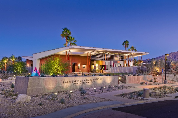 Animal Services City Of Palm Springs