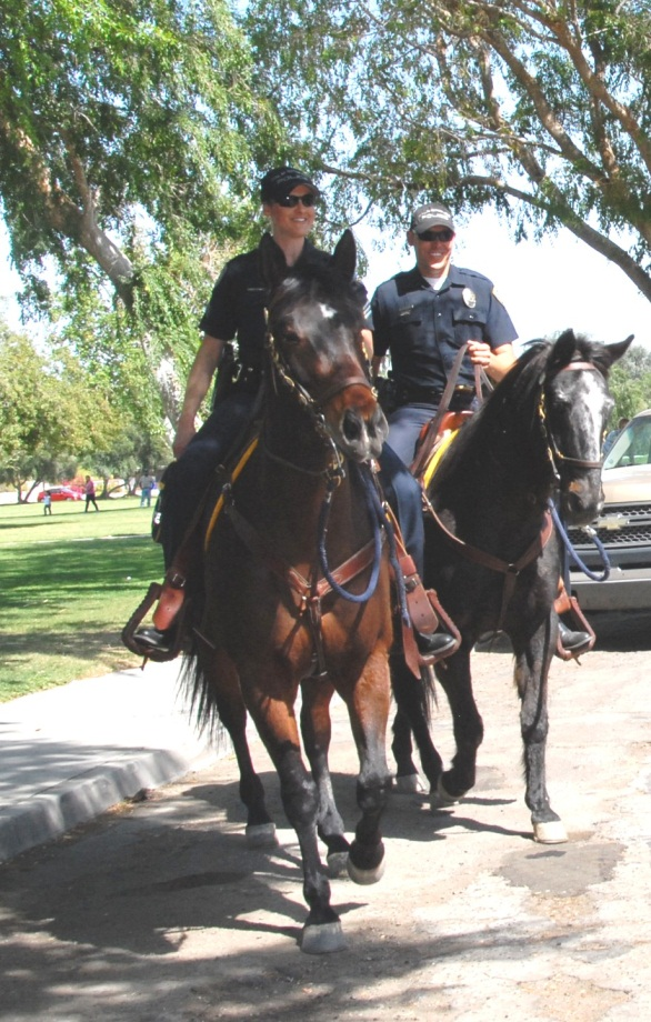 Horses with officers riding